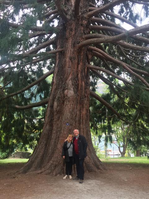 Lidia und Werner vor einem Mammut-Redwood-Baum in Queenstown Gardens, Neuseeland