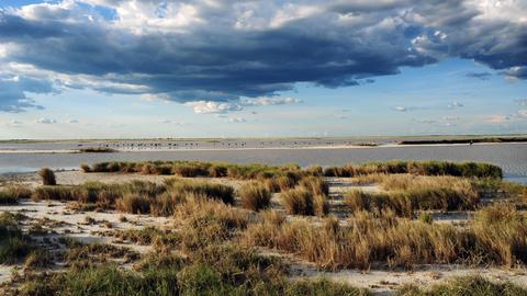 Die stillsten Orte der Welt: Die Makgadikgadi-Salzpfannen im Kalahari-Becken in Botswana